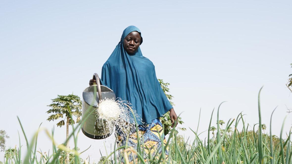 Burkina Fasolainen nainen kastelee peltoa kastelukannulla.